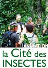 Samedi 09 Mai 2020 - Animation famille, le Jardin-forêt -  Nedde (87)