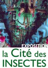 Jeudi 20 Juin 2019 - Exposition : Quand la vie s'en mêle de l'artiste plasticienne Régine Elliott -  Nedde (87)