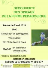 Dimanche 08 Avril 2018 - Sortie découverte des oiseaux tout public -  Sainte-Anne-Saint-Priest (87)
