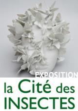 Mercredi 21 oct. 2020 - Exposition du 1er avril au 1er novembre 2020 : l'insecte dans tous ses états ! -  Nedde (87)