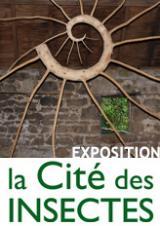 Lundi 25 oct. 2021 - Exposition du 1er avril au 31 octobre 2021 : Réveillons la nature en nous ! Du cocon à la métamorphose -  Nedde (87)