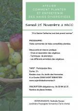 Samedi 25 Novembre 2017 - Comment planter et entretenir des haies diversifiées -  Saint-Sébastien (23)